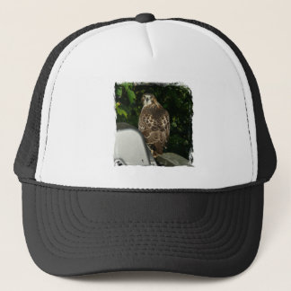 Red tailed Hawk Trucker Hat