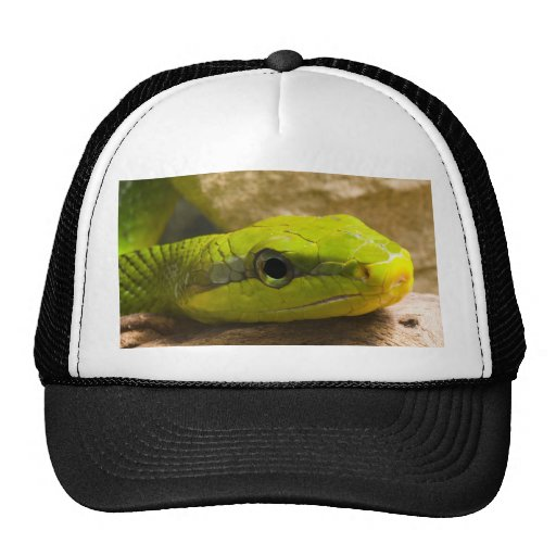 Red Tailed Racer Trucker Hat
