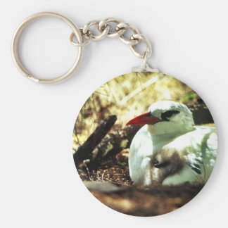 Red-tailed Tropicbird and Chick Keychains