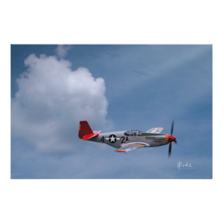 Red Tails By Request Print