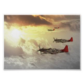 Red Tails jpg Photo