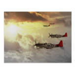 Red Tails.jpg Post Card