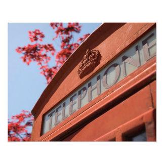 Red telephone box photo