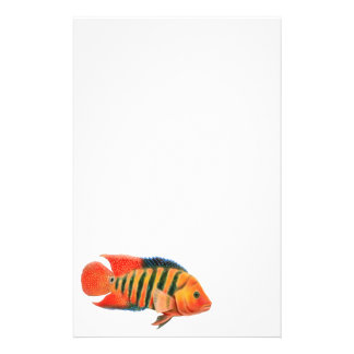 Red Terror Cichlid Stationery
