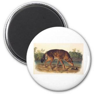 Red Texan Wolf 2 Inch Round Magnet