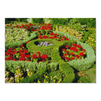 """Red The Knot Garden, New Place, Stratford-on-Avon, 5"""" X 7"""" Invitation Card"""