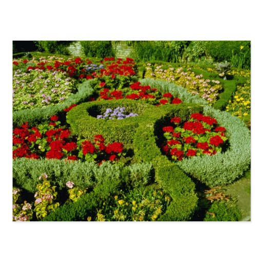 Red The Knot Garden, New Place, Stratford-on-Avon, Post Card