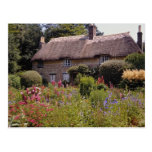Red Thomas Hardy's cottage, Dorset, England flower Postcard