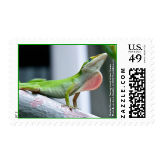 Red-Throated, Dancing Lizards of New Orleans Postage Stamps