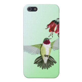 Red Throated Hummingbird 441__P Case For iPhone SE/5/5s
