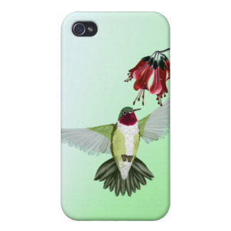 Red Throated Hummingbird 441__P iPhone 4 Case