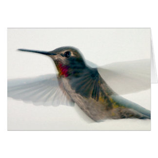 Red-Throated Hummingbird Card