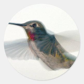 Red-Throated Hummingbird Classic Round Sticker