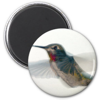 Red-Throated Hummingbird Magnet