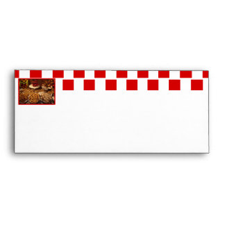 Red Tile Desserts Envelope