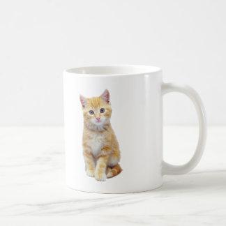 Red To hate Cat Cute Coffee Mug