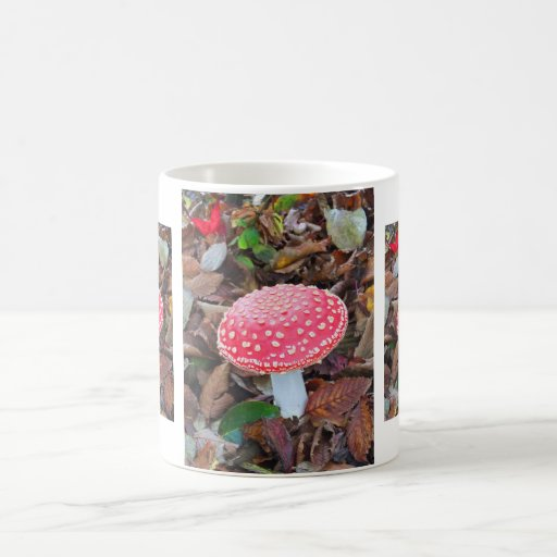 Red toadstool, Amanita muscaria Coffee Mugs