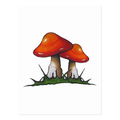 Red Toadstools, Mushrooms: Freehand Marker Art Post Card