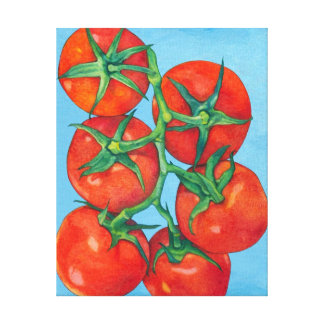 Red Tomatoes blue Canvas Print