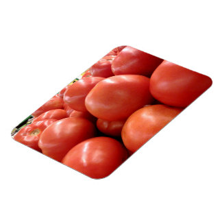 Red Tomatoes Flexible Magnet