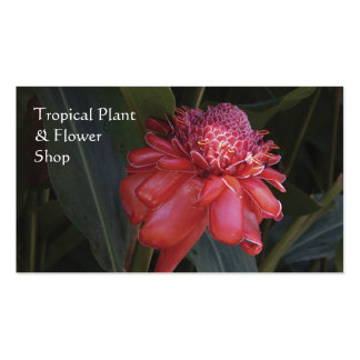 Red torch ginger business card