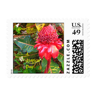 Red Torch Ginger Flower Small Postal Stamps