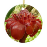 Red Torch Ginger Flower Tropical Nature Double-Sided Ceramic Round Christmas Ornament