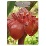 Red Torch Ginger Tropical Flower Photography Clipboard