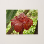 Red Torch Ginger Tropical Flower Photography Jigsaw Puzzle