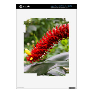 Red Tower Ginger iPad 3 Skin