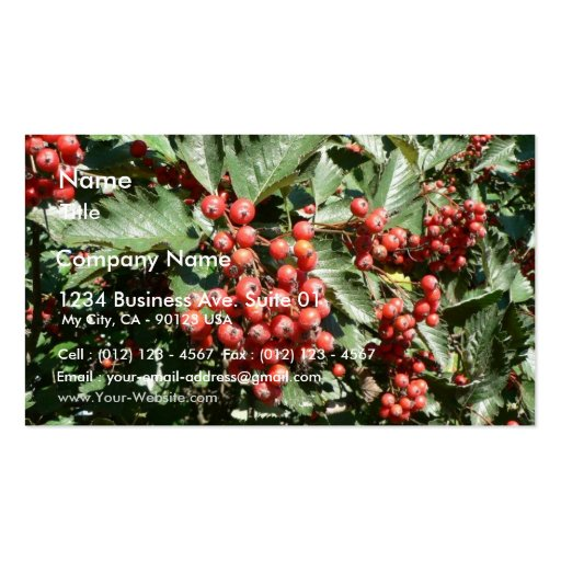 Red Tree Berries Business Card