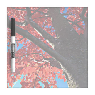 Red Tree Dry-Erase Board