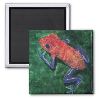 Red Tree Frog Refrigerator Magnets