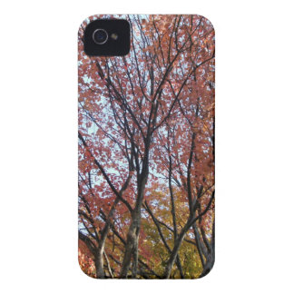Red Tree iPhone 4 Cover