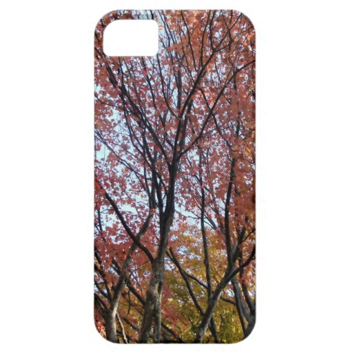 Red Tree iPhone 5 Cover