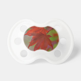 Red Tree Leaves Pacifier