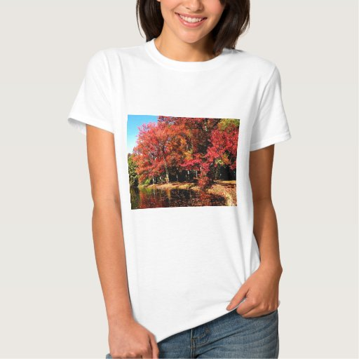 Red Trees by Lake T Shirt