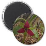 Red Trillium 2 Inch Round Magnet