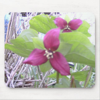 Red Trilliums Mouse Pad