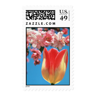 Red Triumph tulip Garden Party flowers Postage Stamp