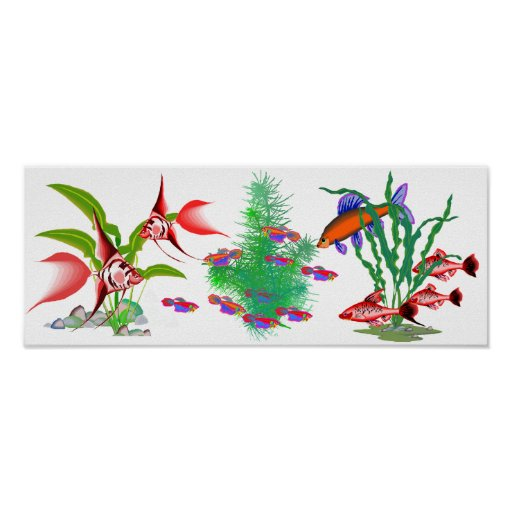 Red Tropical Fish in Plants Poster