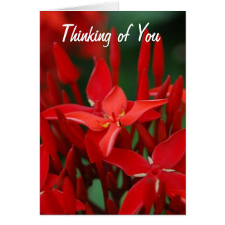 Red Tropical Flowers Card