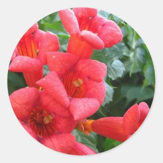 Red Trumpet Flower Round Stickers