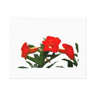 Red Trumpet Flowers cutout photo floral design Canvas Print