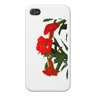Red Trumpet Flowers cutout photo floral design iPhone 4 Covers