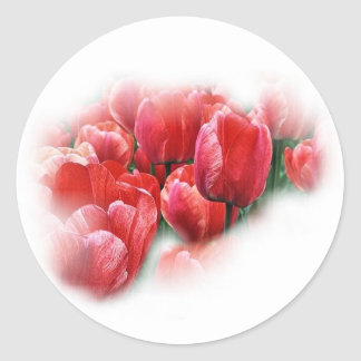 red tuilps classic round sticker