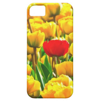 Red Tulip Alone In A Field Of Yellow iPhone SE/5/5s Case