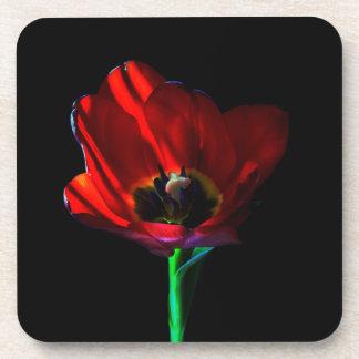 Red Tulip Beverage Coaster