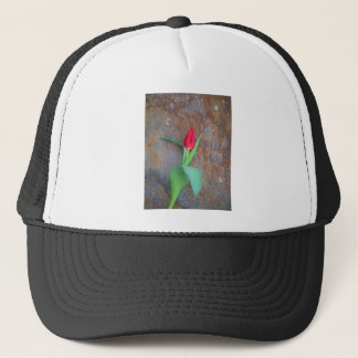Red Tulip Brown Stone Wall Trucker Hat
