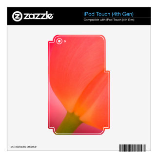 Red Tulip Close-up Skin For iPod Touch 4G